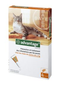 Antipuce Advantage Chat, une solution efficace